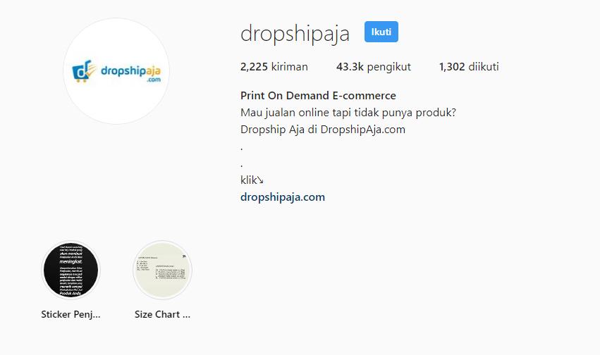 Dropshipaja 11